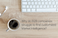 B2B Market Intelligence