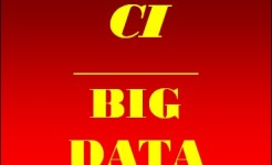 CI-BIG-DATA